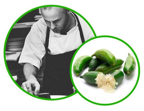 Chef cuisinier restaurant
